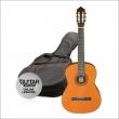 Ashton SPCG34AM gitara pack