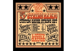 Ernie Ball 2312 Light 5-string Loop End Banjo
