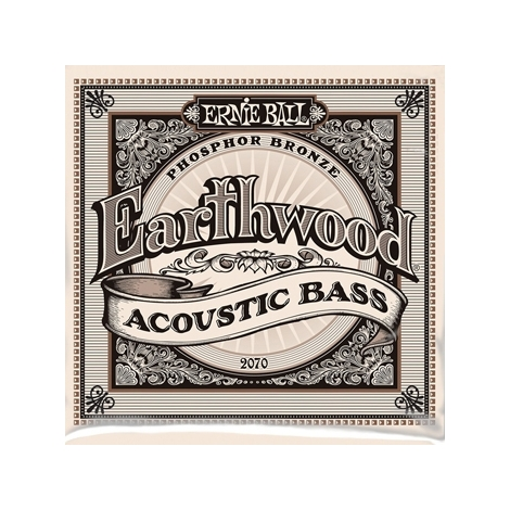 Ernie Ball 2070 Earthwood Acoustic Bass