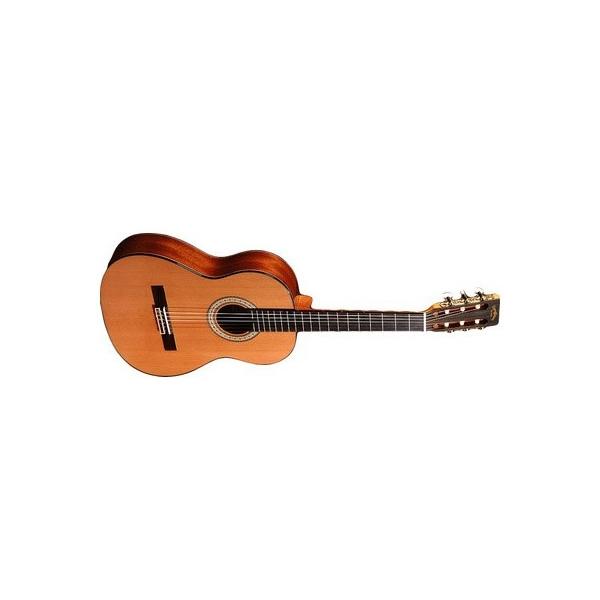 Sigma Guitars CM-6-34