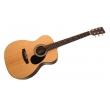 Sigma Guitars OMR-21
