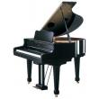 Roland RG 7-RPE Digital Grand Piano