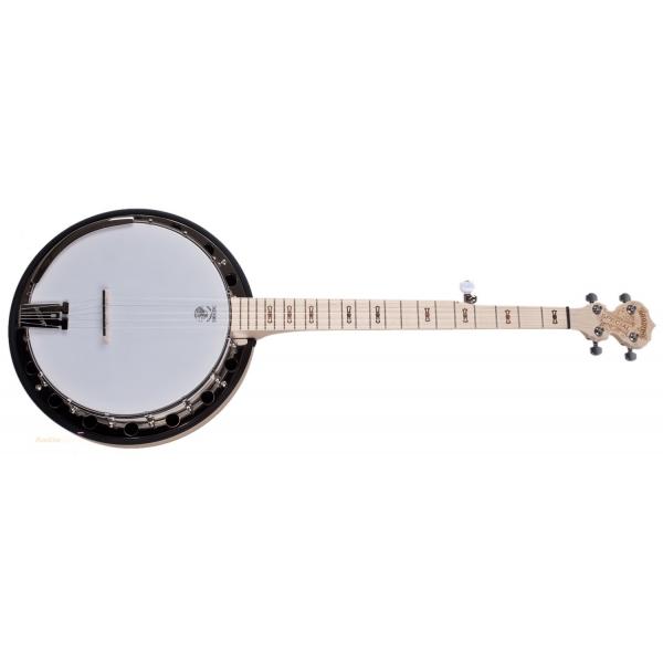 DEERING Goodtime Special Banjo