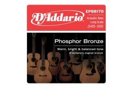 D'Addario EPBB170 Phosphor Bronze Acoustic Bass