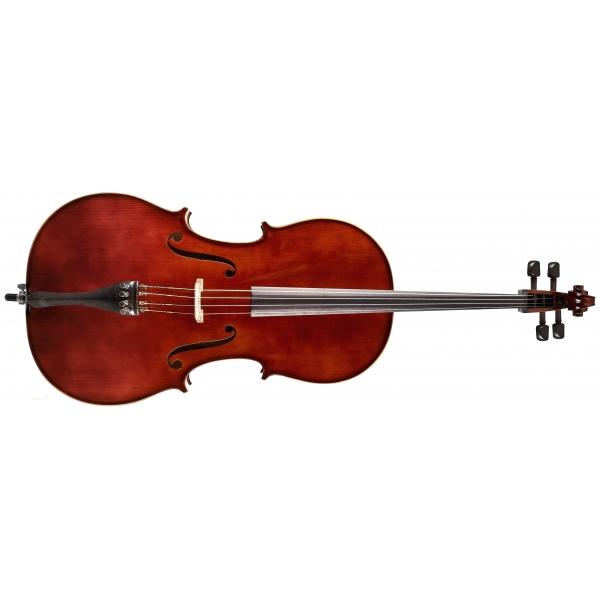 STRUNAL SCHÖNBACH Violoncello Academy 4/15C 1/2