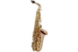 Roy Benson AS-202G Alt saxofón
