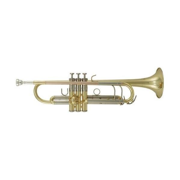 CTS - G B-trúbka Roy Benson TR-403