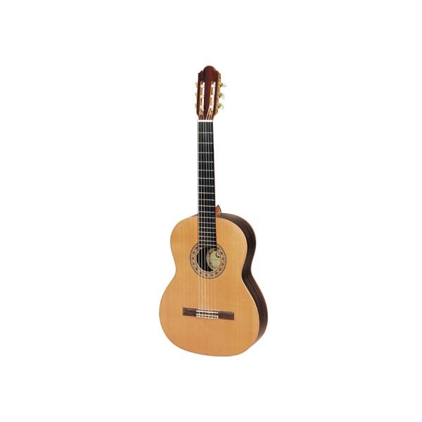 Hora SM 20 Regun guitar N1014