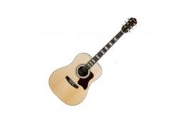 Face gitara DG-34