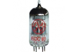 JJ Electronic ECC 81 Tube