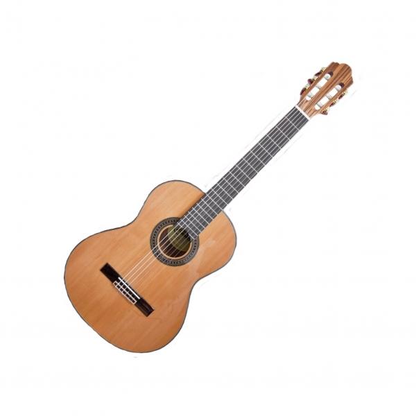 Face gitara CG-30