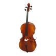 Hora C100 Cello 1/2 all solid